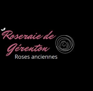 la roseraie de Gérenton spécialisée en roses anciennes
