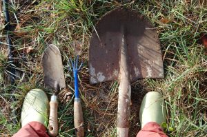 le matériel pour planter les roiers à la roseraie de gérenton